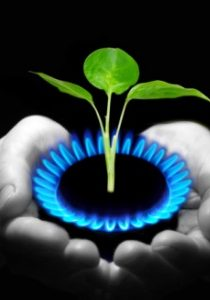 9428-NaturalGas.322181940_std